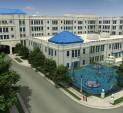 CCMC Rendering
