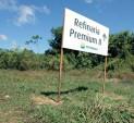 refinaria_premium_2